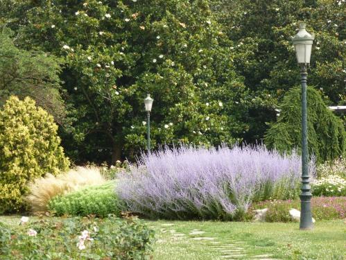 Lyon.garden.lavendar